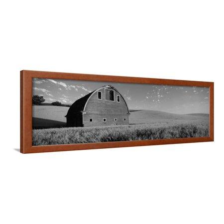 Old Barn in a Wheat Field, Palouse, Whitman County, Washington State, USA Framed Print Wall Art