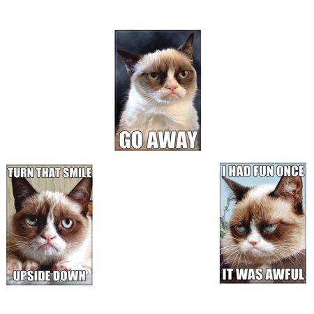 Bundle - 3 Items: Grumpy Cat Refrigerator Magnets #02