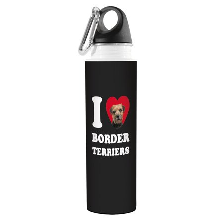 Tree-Free Greetings VB49014 I Heart Border Terriers Artful Traveler Stainless Water Bottle, 18-Ounce