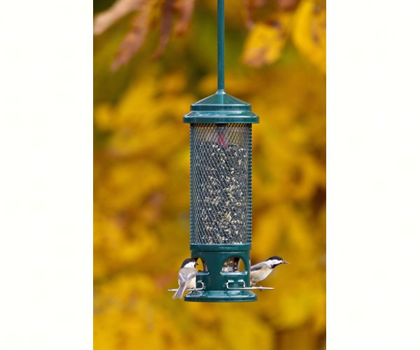Brome 1082 Squirrel Buster Legacy Squirrel Proof Wild Birdfeeder, Holds 2# Seed by Birdfeeders