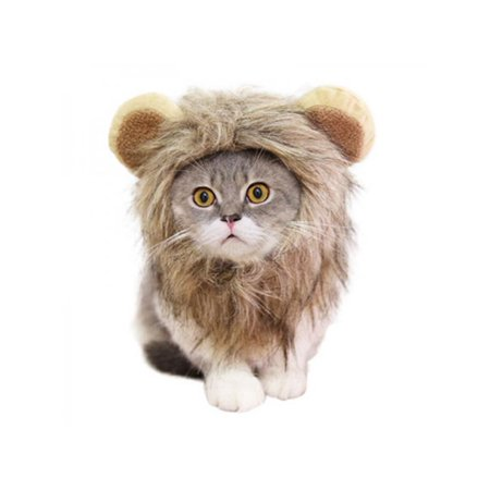 Dog In A Wig (Topumt Pet Cat Halloween Hair Dress Lion Mane Wig Cosplay)
