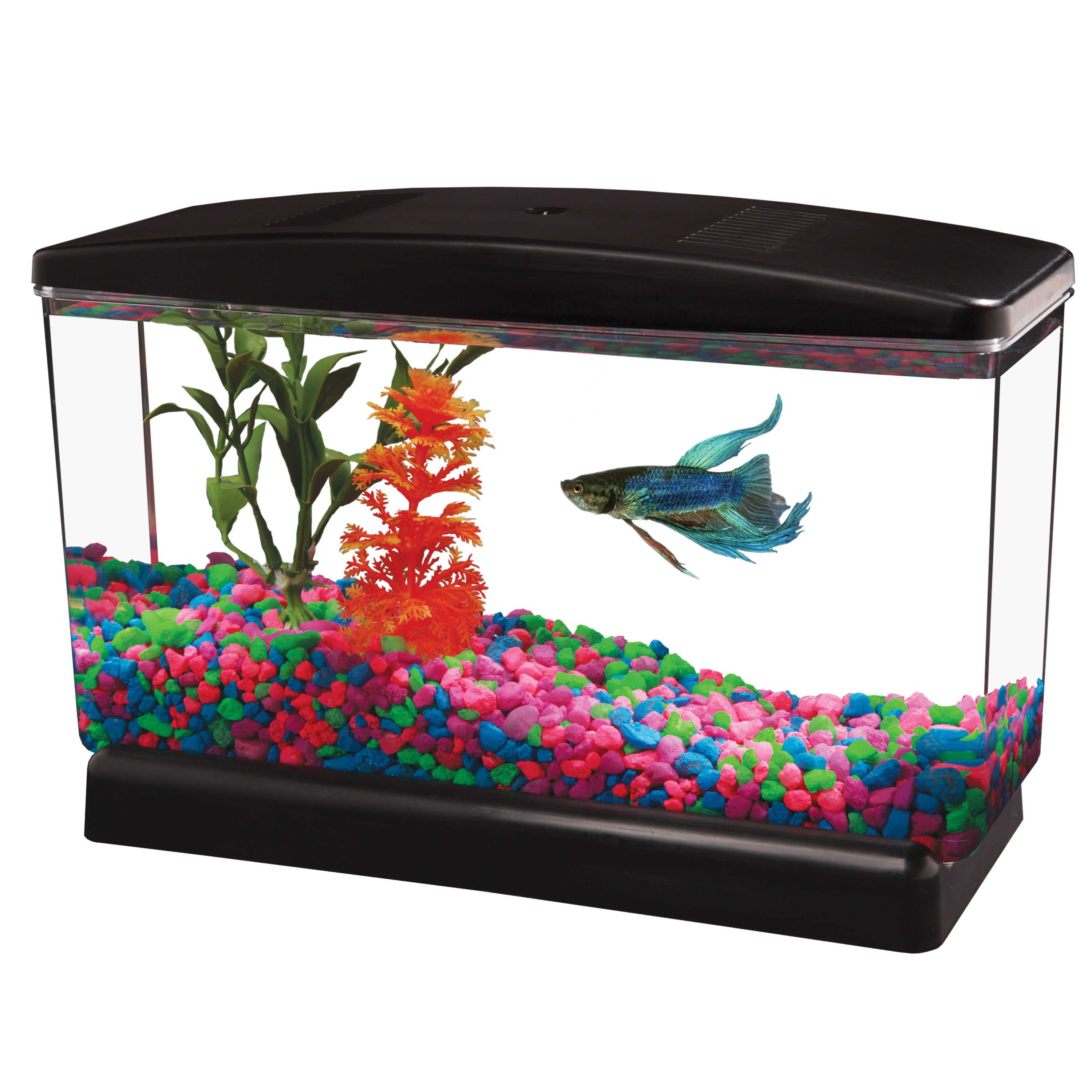 "Aqua Culture BettaView Aquarium .5 Gallon, 9.75""L x 3.80""W x 6.25""H"