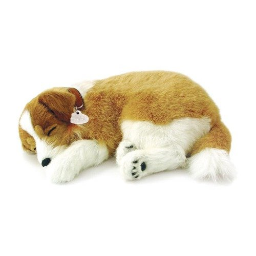 Collie Soft Toy