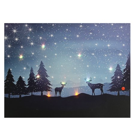 Canvas Print Home Decor LED Lighted led light canvas art Wall Picture Art Painting Poster 40cmx30cm ()