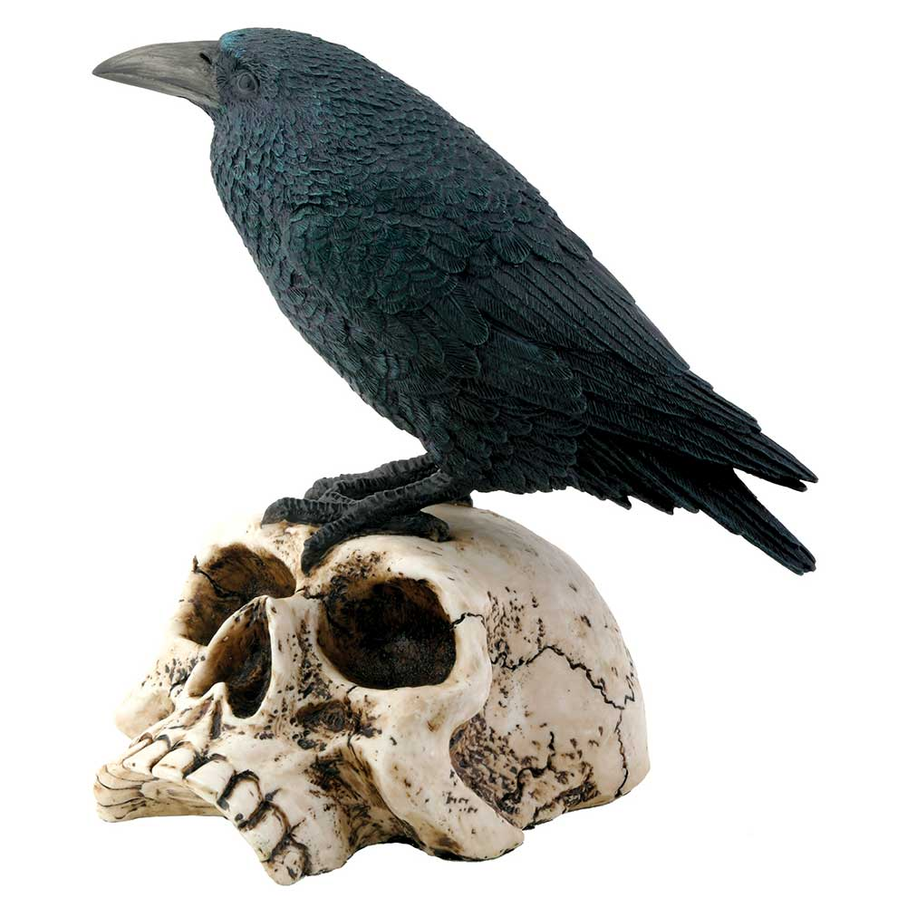 Raven On Skull Resin Figurine