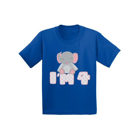 Awkward Styles 4th Birthday Toddler Shirt Cute Elephant Gifts For 4 Year Fourth Old My