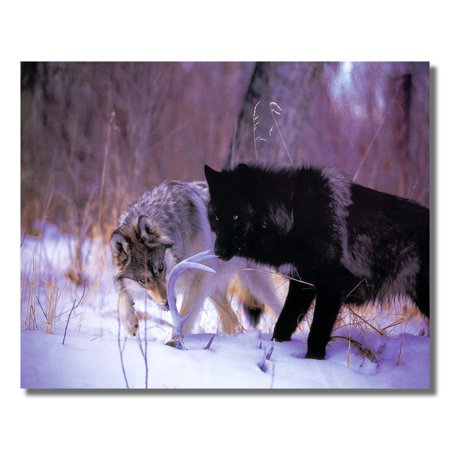 Antler Art - Wolf Deer Antler Rack Cabin Wall Picture Art Print