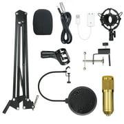 BM800 Condenser Microphone Lit Pro Audio Studio Recording & Brocasting Adjustable Mic Suspension Scissor Arm Filter Golden