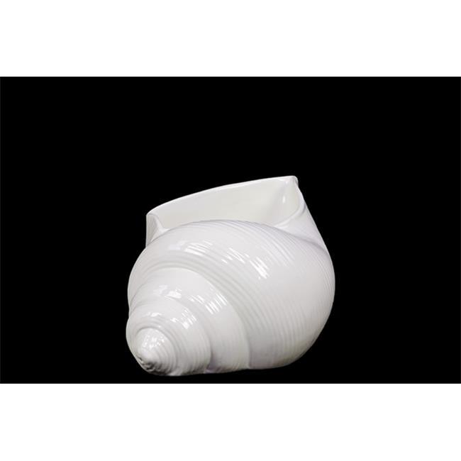 Urban Trend 73107 6 in. H Ceramic Shell White Small
