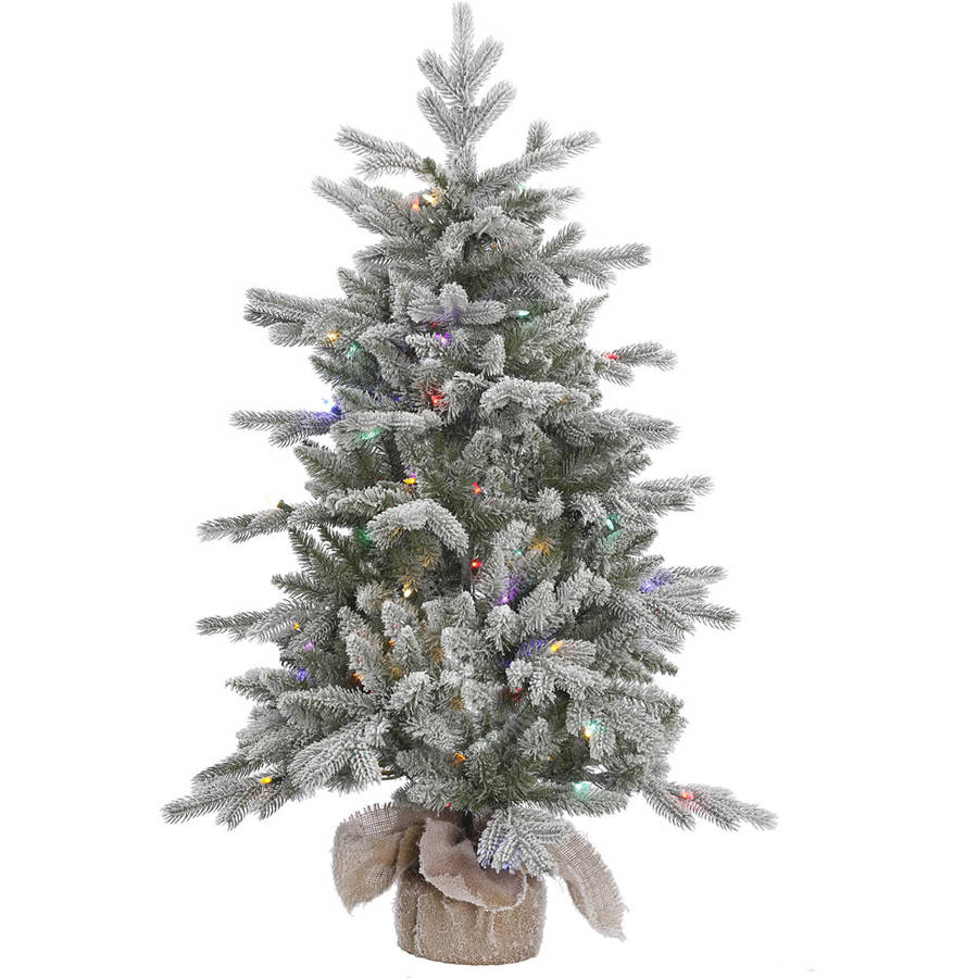 Vickerman Pre-Lit 4' Frost Sable Pine Artificial Christmas Tree, LED, Multicolor Lights