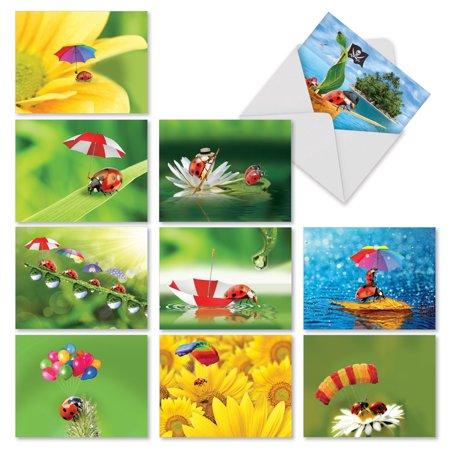M1546BN LADY B.' 10 Assorted All Occasions Note Cards Feature Whimsical Images of Ladybugs with Envelopes by The Best Card