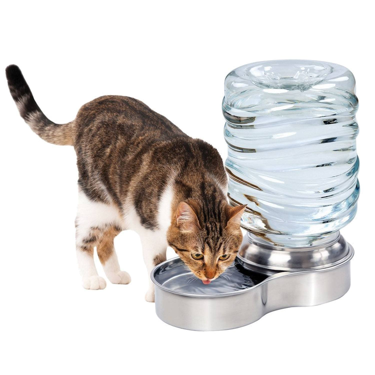 Stainless Steel Dog & Cat  Hydrating Water Fountain –  Pet Water Dispenser