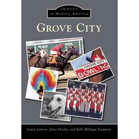 Grove City - eBook (Party City Grove City)