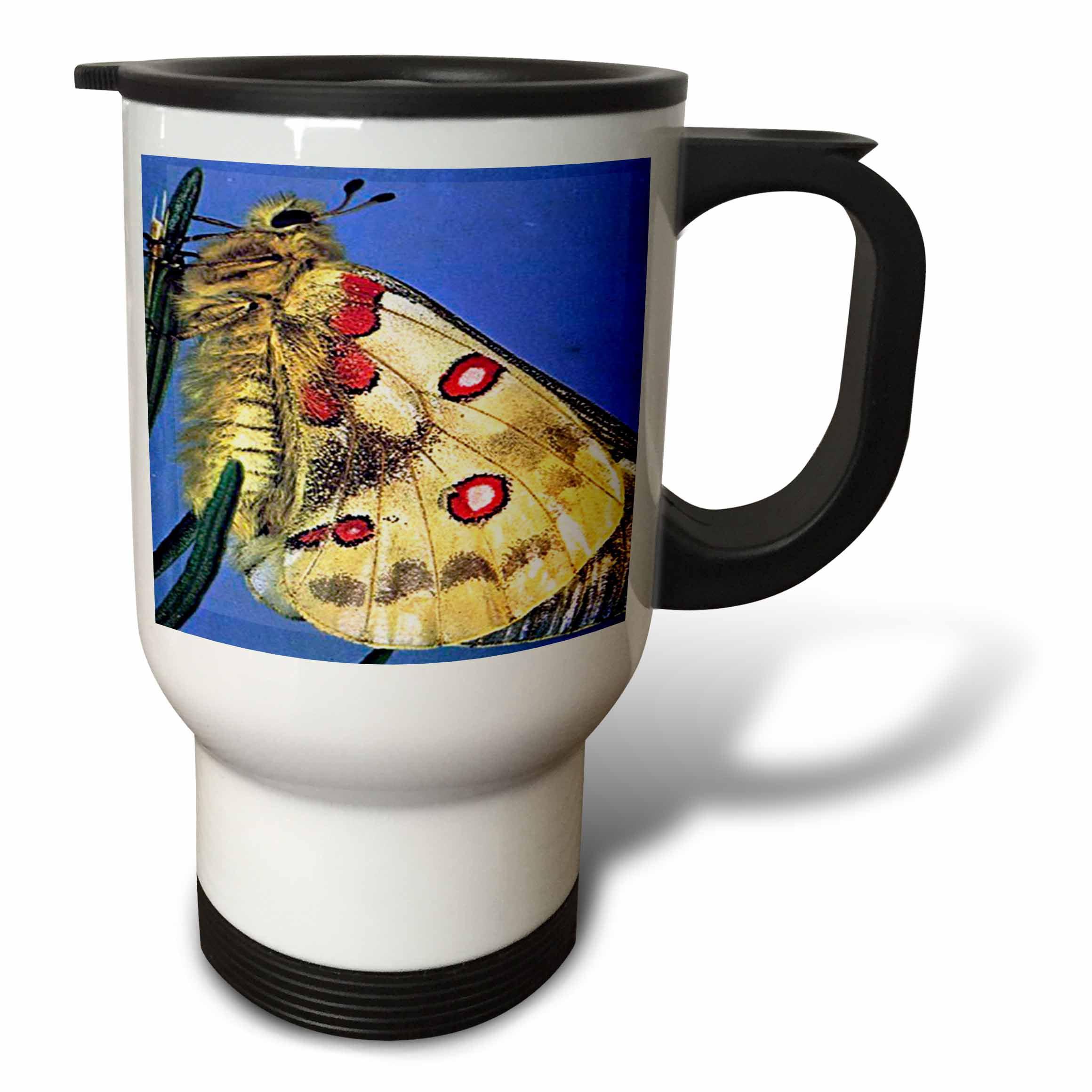 3dRose Beautiful Moth, Travel Mug, 14oz, Stainless Steel