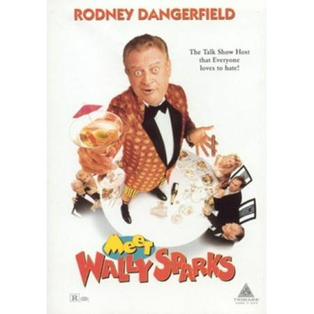Meet Wally Sparks (DVD) - Wally World Movie