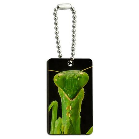 Praying Mantis Wood Rectangle Key Chain