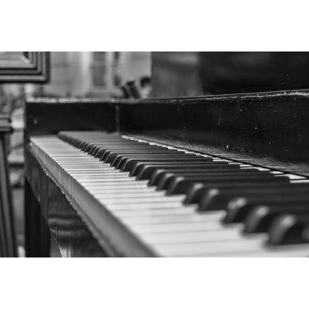 LAMINATED POSTER Keys Music Close Piano Instrument White Black Poster Print 24 x 36 (Black White Music Posters)