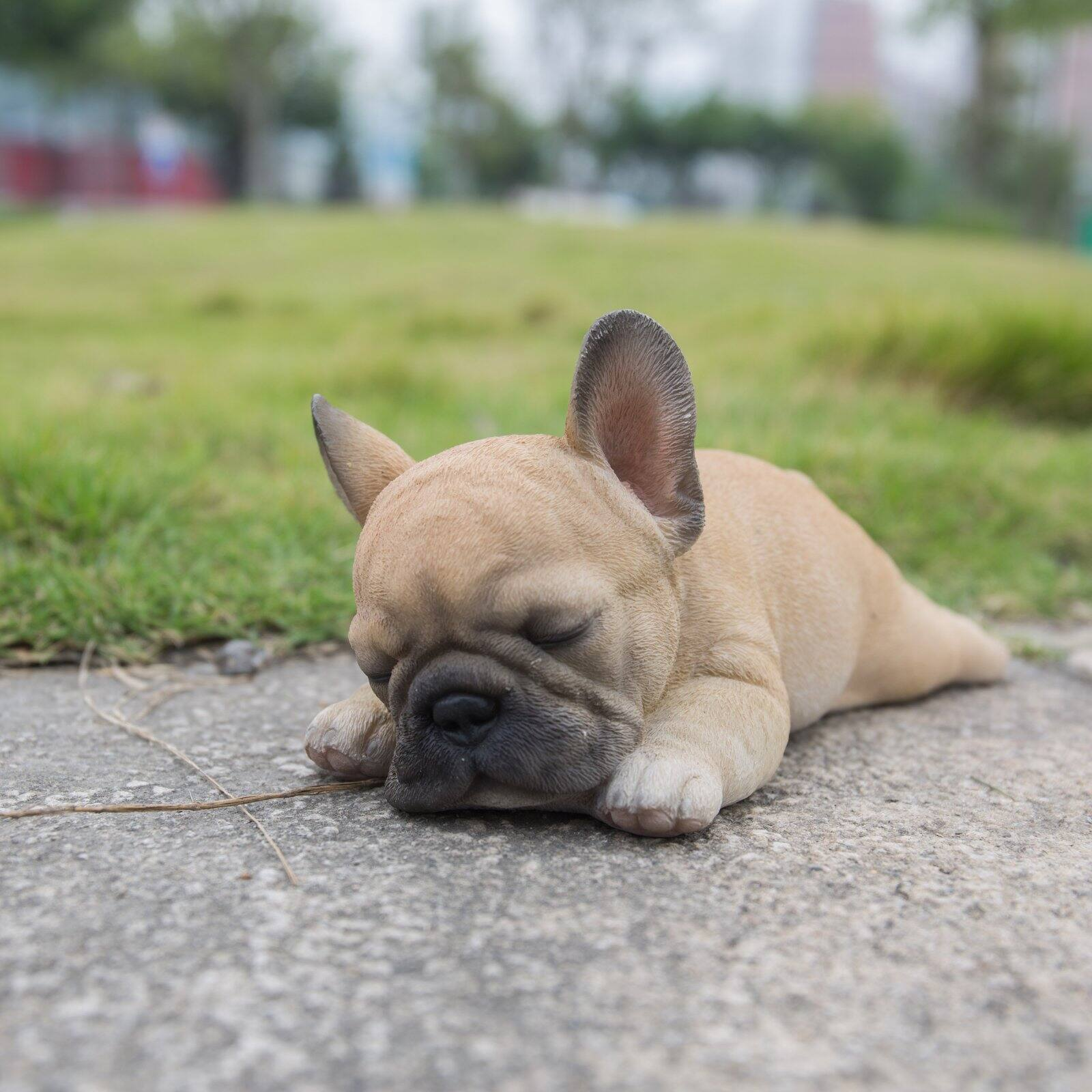 "FRENCH BULLDOG PUPPY DOG FIGURINE STATUE RESIN PET 8.5/"" L SLEEPING ON SIDE NEW"