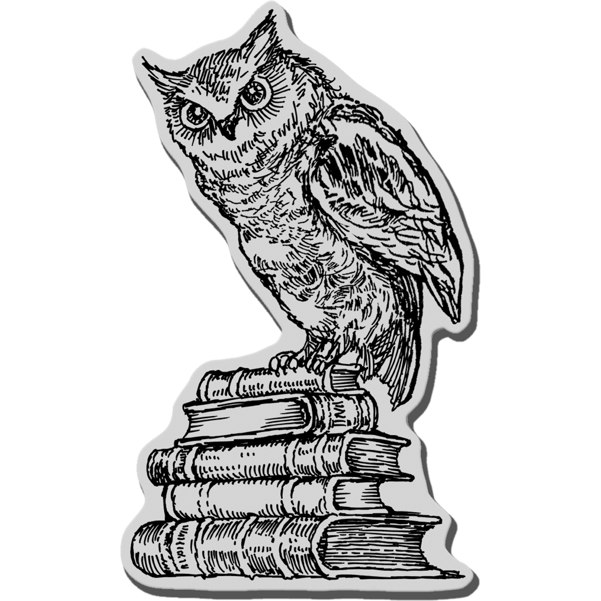 "Stampendous Cling Stamp 3.5""X4"" -Literary Owl"