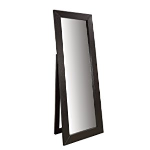 Coaster Floor Mirror, Dark Cappuccino Finish by Coaster Company