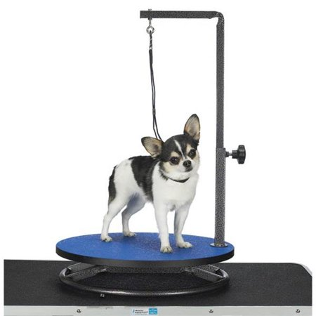 Master Equipment TP160 17 Master Equipment Small Pet Grooming Table Black S - image 1 of 1