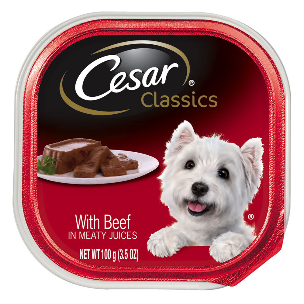(24 pack) CESAR CANINE CUISINE Wet Dog Food with Beef, 3.5 oz. Tray