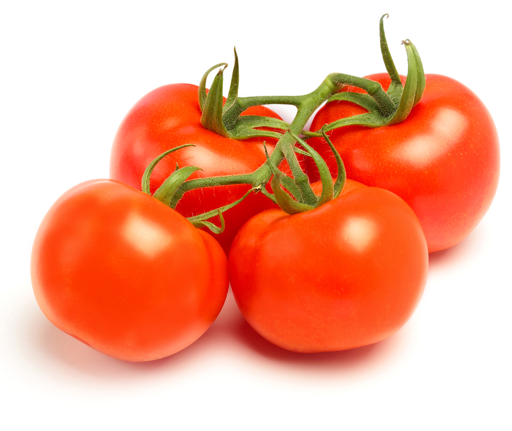 online fresh tomatoes games