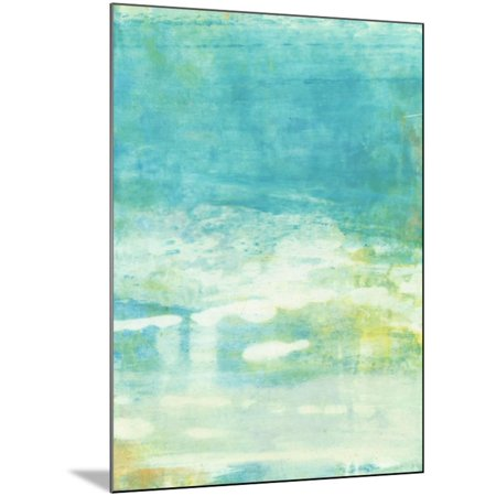 Lacuna II Wood Mounted Print Wall Art By Sue Jachimiec