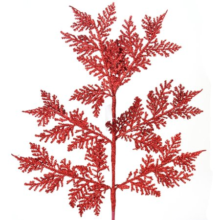 Red Cedar Stem