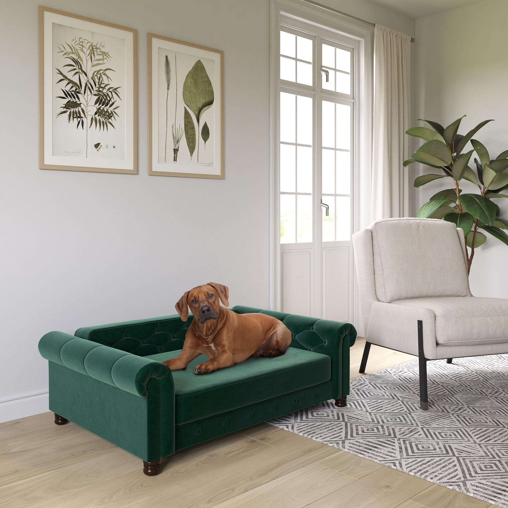 Picture of: Ollie Hutch Felix Pet Sofa Large Size Pet Bed Green Velvet Walmart Com Walmart Com