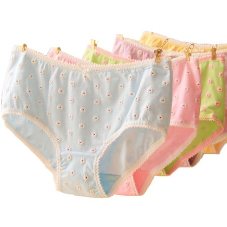 Women's 3D Little Daisy Underwear Low Waist Cotton Bowknot Brief Panty