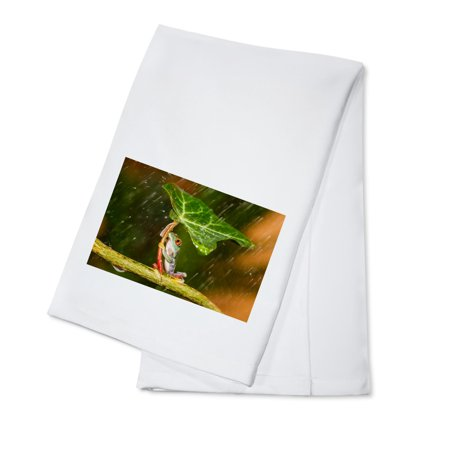 Tree Frog using Leaf as Umbrella - Lantern Press Photography (100% Cotton Kitchen Towel)