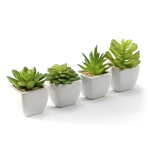 Nattol Artificial Succulent, Succulents Plants Potted in Cube-Shape White Ceramic Pots , Set of 4 (White)