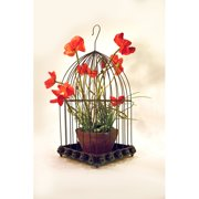 Metrotex Designs Wild Rose Design Bird Cage with Hook
