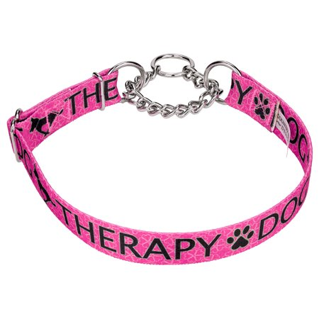 Country Brook Petz™ Pink Therapy Half Check Dog