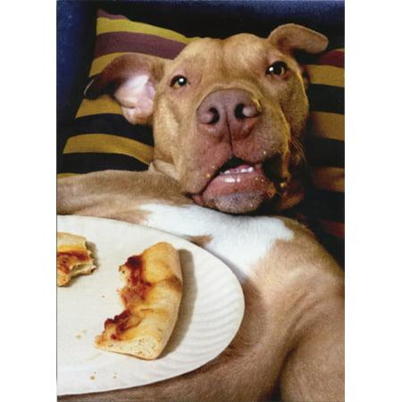 Avanti Press Dog Pizza Plate Funny Birthday - Dog Birthday Card