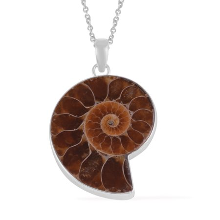 """Ammonite Chain Pendant Necklace for Women Jewelry Gift 20"""""""