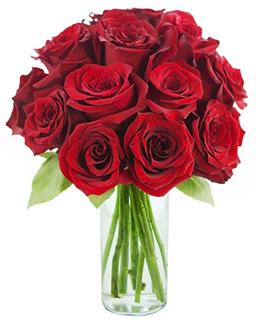 KaBloom Motheru0027s Day Special: The Classic Red Rose Bouquet Of 12 Fresh Cut Red  Roses