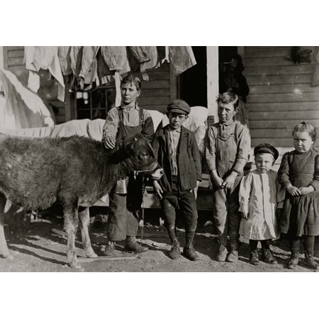 Wylie Mill Chester SC Boy with calf is Pamento Benson Raising it for beef Has worked in mill 2 years Mr Benson said Just as soon as the boys get old enough to handle a plow we go straight back to the - Mr Plow