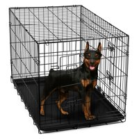 "Paws & Pals 24"" Heavy Duty Foldable Double Door Dog Crate with Divider and Removable ABS Plastic Tray, 24"" x 17"" x 19"""