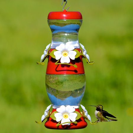crackle hummingird bird products red modern humming feeder model hummingbird