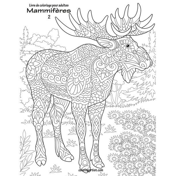 Mammiferes Livre De Coloriage Pour Adultes Mammiferes 2 Series 2 Paperback Walmart Com Walmart Com