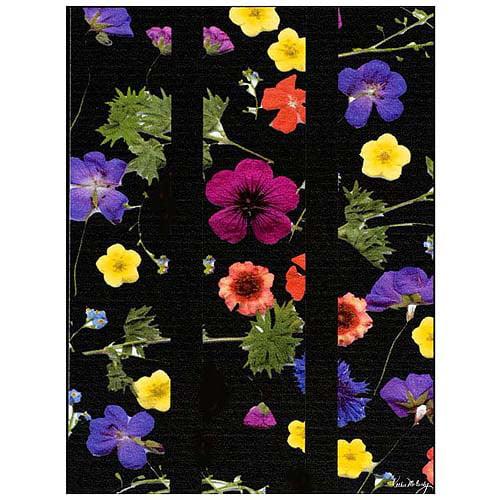 """Trademark Art """"Night Garden"""" Canvas Art by Kathie McCurdy, 18x24"""