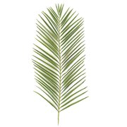 Autograph Foliages PR-2682 46 in. Areca Palm Branch, Tutone Green