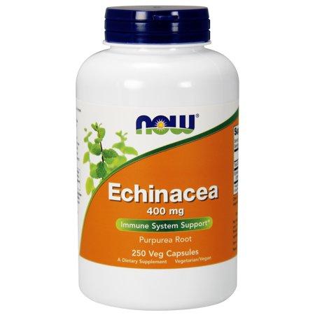 NOW Supplements, Echinacea (Purpurea Root) 400 mg, Immune System Support*, 250 Veg Capsules Echinacea Purpurea Echinacea Medicine