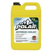 POLAR PO01AF6P Antifreeze Coolant, 1 Gal.