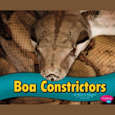 Boa Constrictors - Audiobook