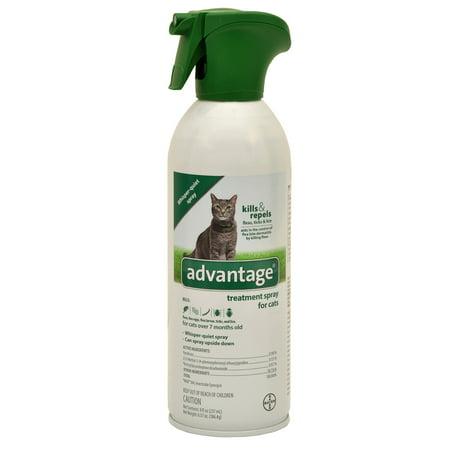 Bayer Advantage Flea Tick and Lice Treatment Spray for Cats, 8