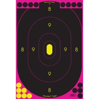 Birchwood Casey Shoot N C Pink Targets