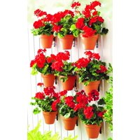 Mainstays Wall Planter Vertical Plant Bracket